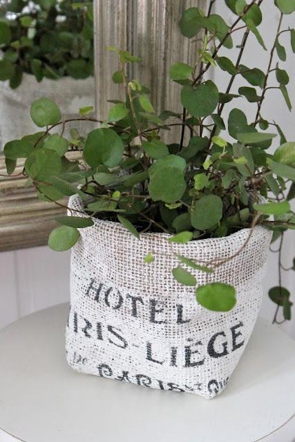burlap for potted plants...cute  http://savittjagvetblogg.blogspot.com