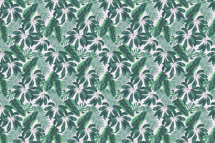Transform any room into a tropical haven with the Mixed Tropical Leaves Wallpaper. Buy today and bring a cool Hawaiian vibe to your interior.