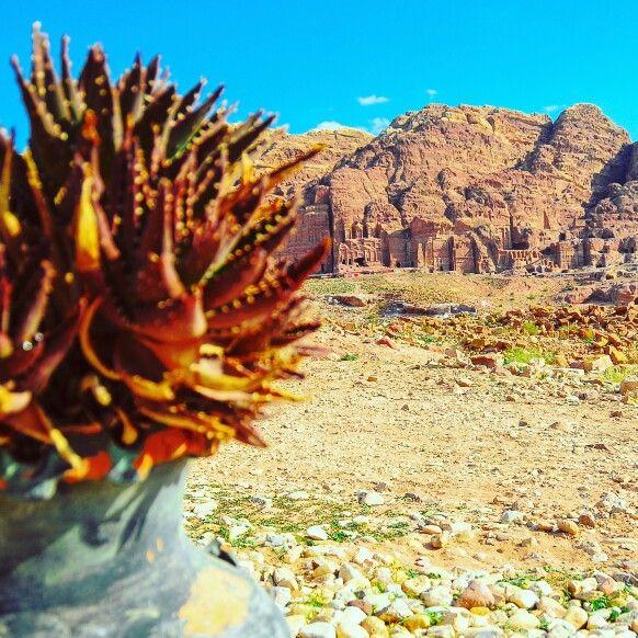 Amazing Petra, Jordan. Photo by Nosfotos