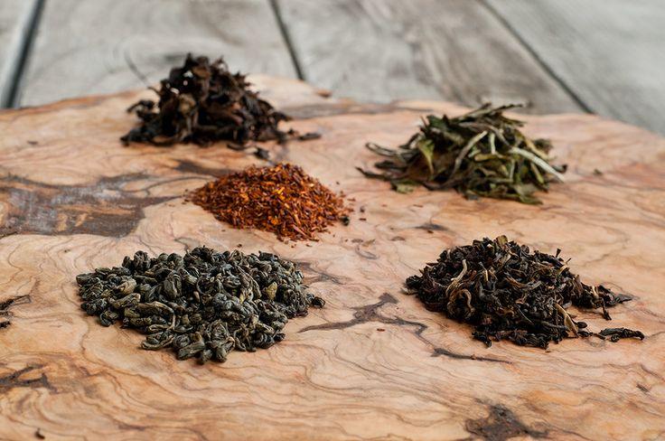Fermentación: Cómo elegir el té para la kombucha