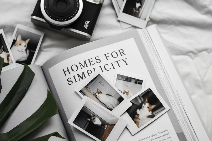 Playing around with my new Instax camera. #instax #mitinstax #polaroid #minimalistic #scandinavian #kinfolk #cats #kittens #catlife #minimalisticlife #design