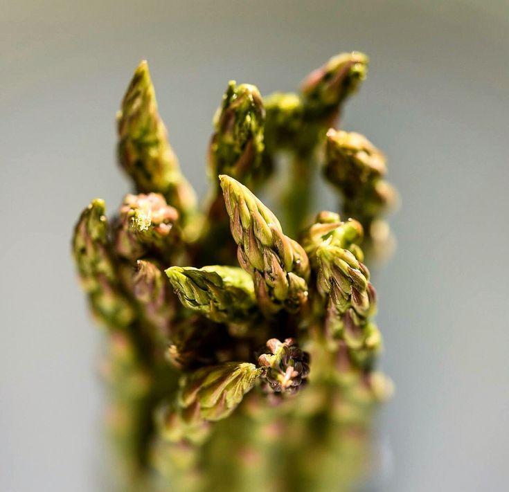 Food Photography #asparagus Nikon D750 Sigma Macro Lens