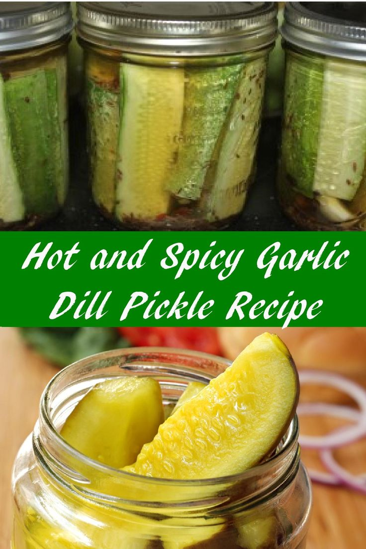 Hot and Spicy Garlic Dill Pickle Recipe - Our Favorite Pickle Recipe!