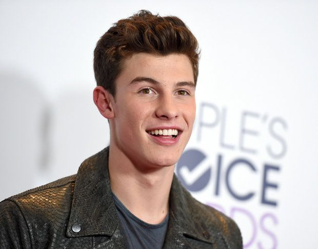 'Stitches' singer Shawn Mendes' tour dates...: 'Stitches' singer Shawn Mendes' tour dates include one Upstate NY concert… #ShawnMendes