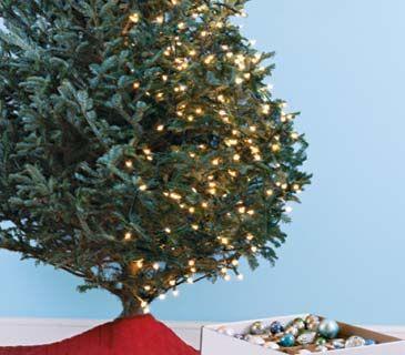The Art of Christmas Tree Lighting