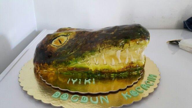 #crocodil #timsah #arena #mutfakkafe #taraftar #teksas #amazingcake #brush #pasta