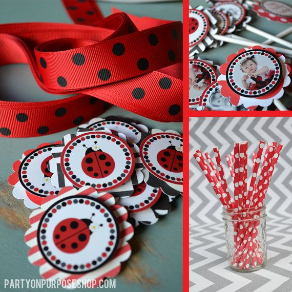 Lady Bug Birthday Party Decorations Package - Ladybug Party