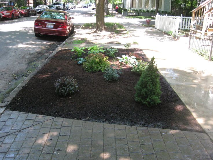 Front landscape design on a dime in chicago 4 seasons of for Landscape design chicago