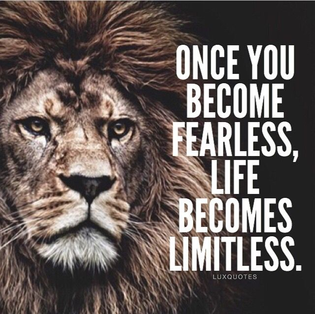 True & Spot On I Fear Absolutely Nothing I Feel Like A Lion, King In A Concrete Jungle & I Luv It, Quotes Spot On...