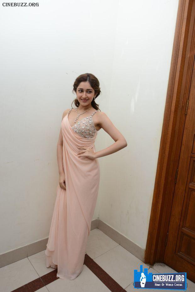 Hot Pics of Sayesha Saigal