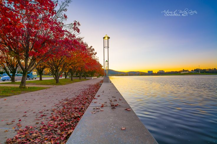 For better quality or to get this in print: http://www.sactyr.com/autumn-at-burley-griffin/  Fiery red autumn leaves and beautiful sunset; autumn is a lovely time in Canberra. This was shot last evening, and there were quite a few photographers out there yesterday. If you're one of them, holler out below in the comments.  Exposure: 1/4s Aperture: f/11 Focal Length: 11mm ISO Speed: 100  #ACT #Australia #AustralianCapitalTerritory #autumn #Canberra #lake #LakeBurleyGriffin…