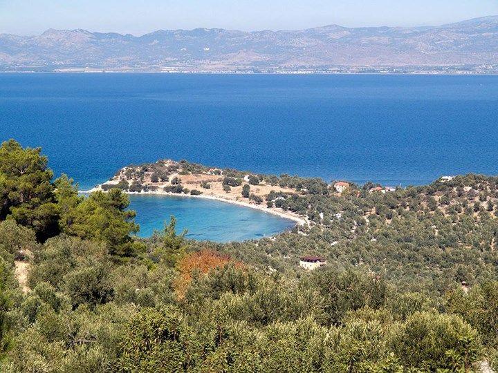 Antik Yunan'ın Kayıp Adası Dikili'de Bulundu