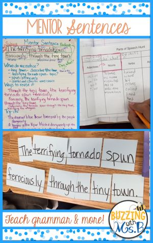 Using mentor sentences is a great way to help students recognize and write in varied sentence structures. Mentor Sentences: Grammar, Word Choice, Buzzing with Ms. B