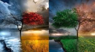 Картинки по запросу картинки про времена года