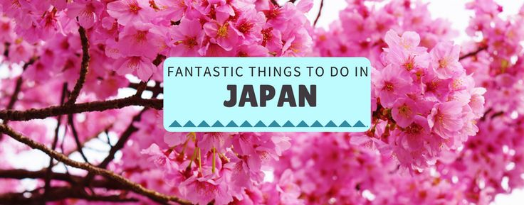 Find out why you should add Japan to your Bucket List. Great things to see and do whilst you're in Japan, including capsule hotel, sumo wrestling and sushi!