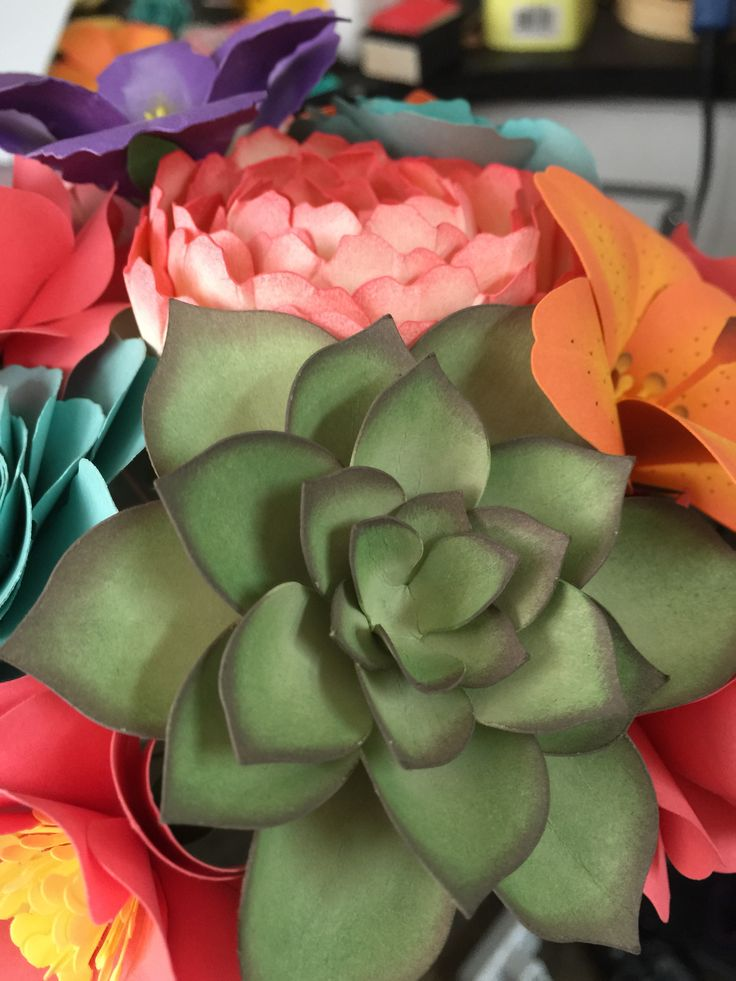 Supply List- 85lb Cardstock- Paper Source Sage Succulent (Lia Griffith has some great succulent patterns) Side note- I added an additional piece to my succulent because I felt like there was too mu...