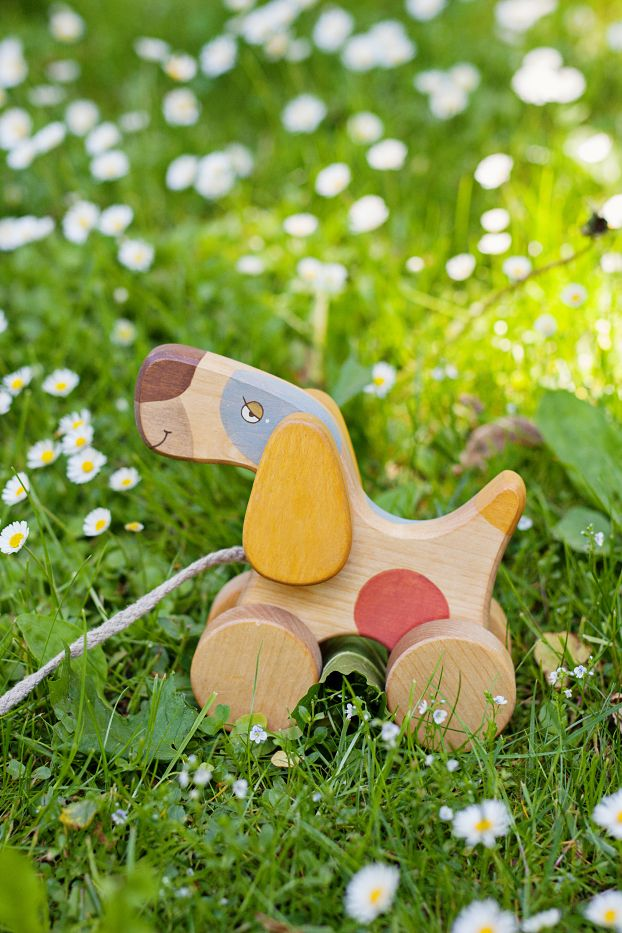 Handmade wooden toy, pull toy dog