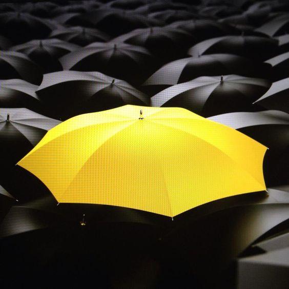 Leyes de la Gestalt- Ley del contraste: El paraguas amarillo contrasta con los negros haciendo a este primero único