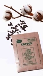 How to Grow Cotton - Grow cotton indoors and out