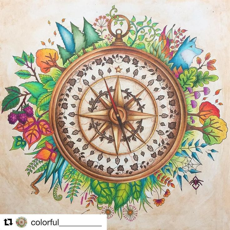 Repost Colorful Compass Enchantedforest Enchantedforestcoloringbook Johannabasford Adultcoloringbook Coloringtherapy