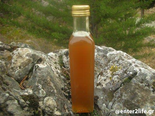 Σιρόπι με Πευκοβελόνες για τον βήχα και το κρυολόγημα – enter2life.gr