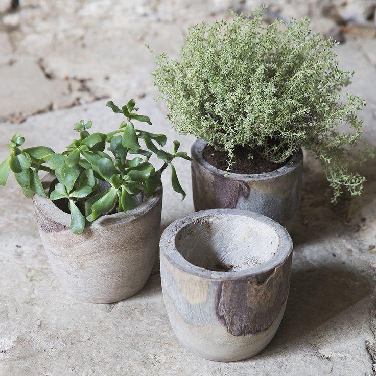 $13 Bothy Pot - Grey Wash H13.5xØ15.5cm Material: paulownia wood