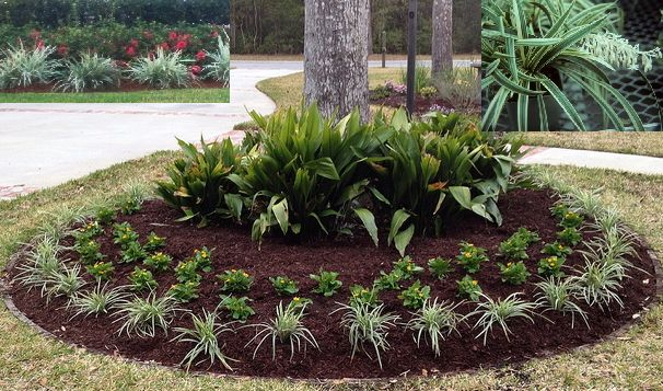 Yard Border Ideas Landscape Edging