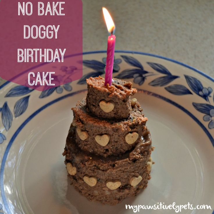 Dog Birthday Cake Recipes Rachel Ray