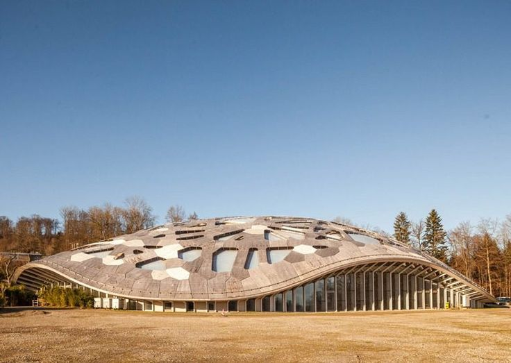 This Swiss Elephant Habitat Looks a Bit Like a Geodesic Turtle - Animal Architecture - Curbed National