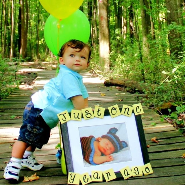 1000+ Ideas About First Birthday Photography On Pinterest