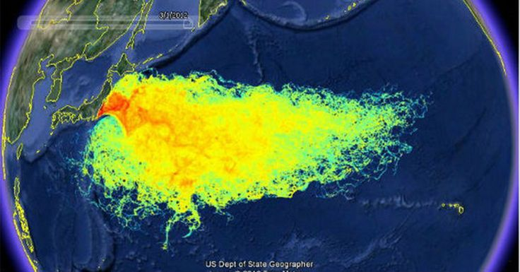 Fukushima Has Now Contaminated Over 1/3 Of The Worlds Oceans (And It's Getting Worse) – Awareness Act
