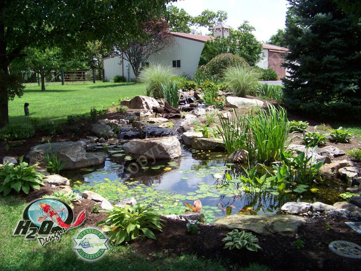 52 best images about fish pond on pinterest gardens for Koi pond builders near me