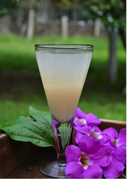 By Anitha Gomathy Barley water is a wonderful natural beverage, which helps to prevent urinary tract infections for those who opt to enjoy it on a daily basis. But there are many other benefits to this easy-to-make tonic, which are outlined below (along with 2 simple recipes). Here are 10 reasons to incorporate barley water [...]