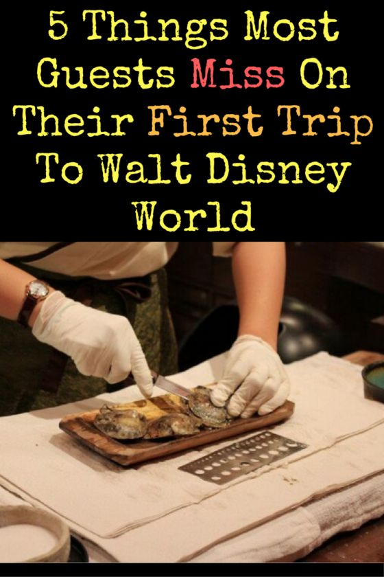 It just isn't possible to see and do everything on your first trip. That's why you have to keep coming back for more! Here are 5 things most guests miss on their first trip to Walt Disney World.