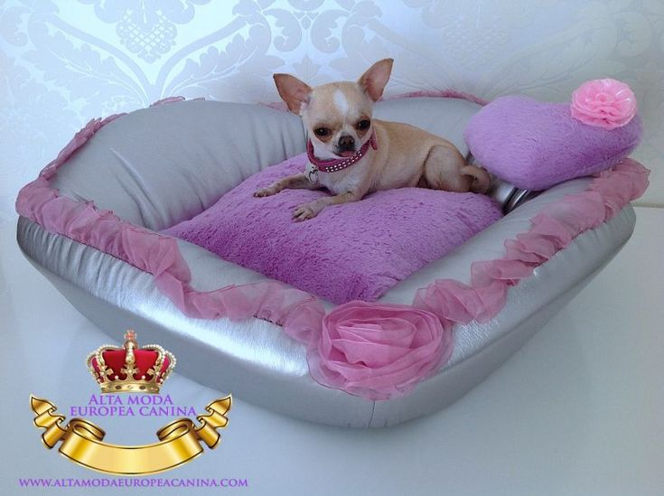 Camas, Sofas y Colchones para Perros Camas, Sofas y Colchones para Perros Bienvenido a Alta Moda Europea Canina.com el paraiso de los perros de raza pequeña. Tenemos camas para perros, sofas de lujo