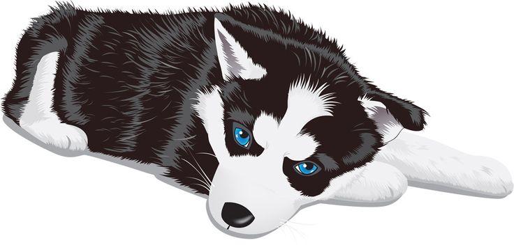 [フリーイラスト素材] クリップアート, シベリアン・ハスキー, 犬 / イヌ, 哺乳類, 動物 / 生き物, 子犬 / 仔犬, AI ID:201406231400
