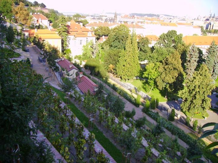 Ledebour garden, Prague