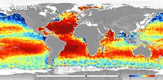 Watch Ocean Acidification in Real Time - Scientific American