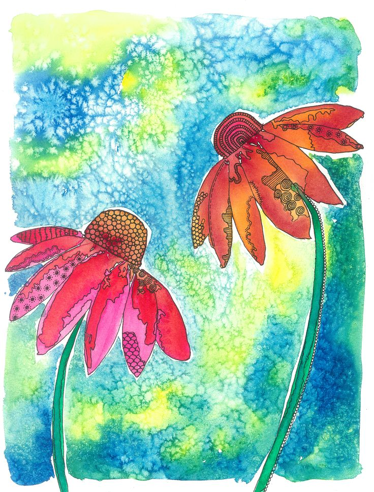 Echinacea flowers - Wine & Untangle