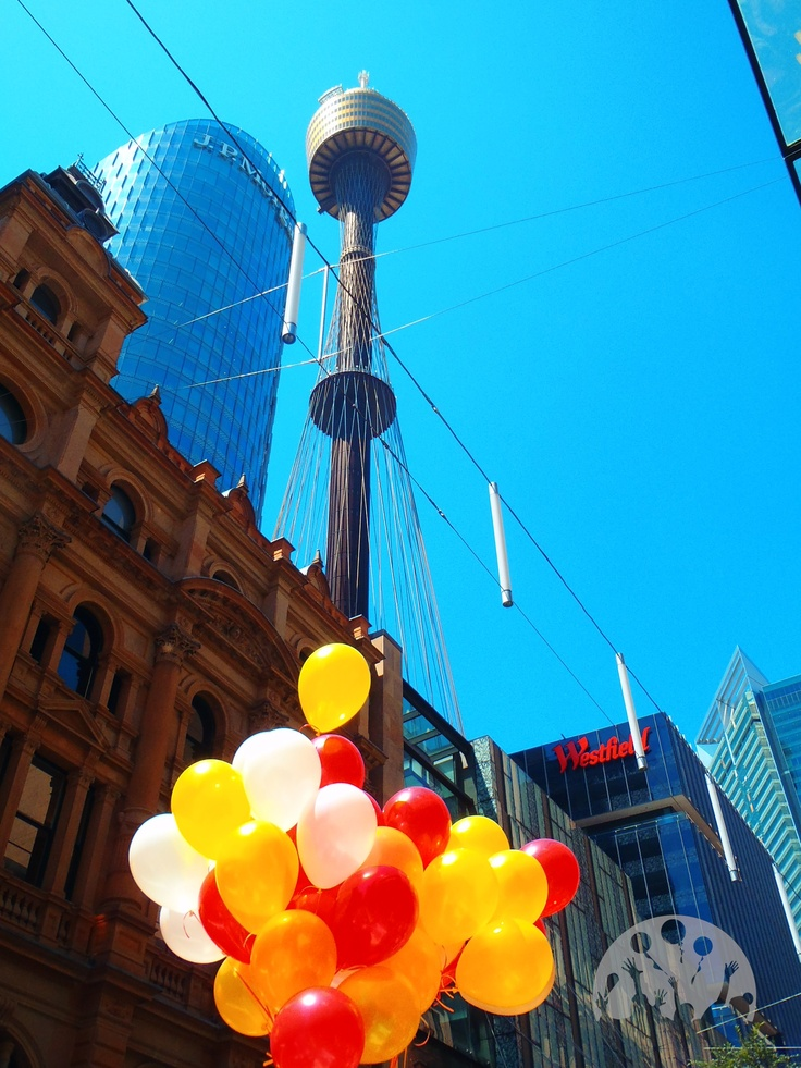 Carnival & Party balloons on CELEBRITY APPRENTICE AUSTRALIA!