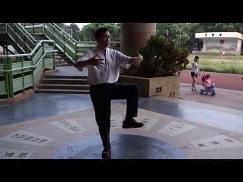太極拳摔打拿踢之實戰用法之三才樁練法 - YouTube
