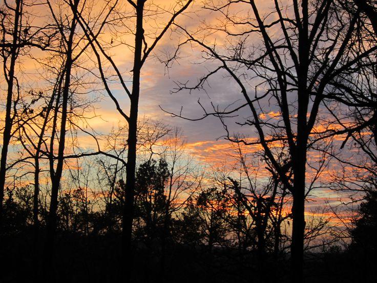 En las pálidas tardes me cuenta un hada amiga las historias secretas  llenas de poesía: lo que cantan los pájaros, lo que llevan las brisas, lo que vaga en las nieblas, lo que sueñan las niñas.  Autumnal, Rubén Darío