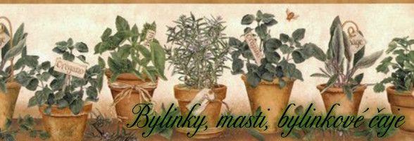 seznam bylinky a jejich použití, léčivé bylinky, byliny, bylinky