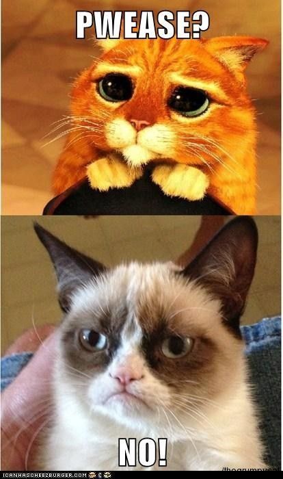 Grumpy Cat hates Puss n Boots