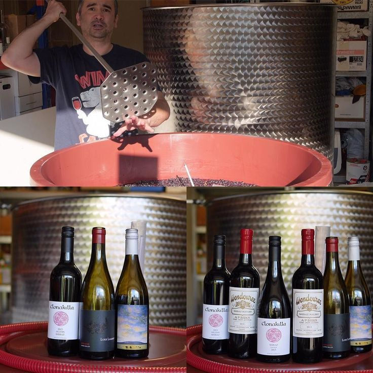 A couple of Shiraz Packs & a blog about our Shiraz up know on winedecided.com.au #drinkit #makeit