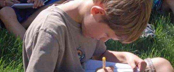 how to write a haiku by Bob Raczka, poet and author of Guyku