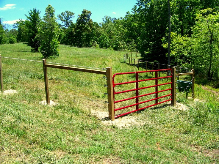 22 Best Fence Plans Images On Pinterest Fences Biscuits