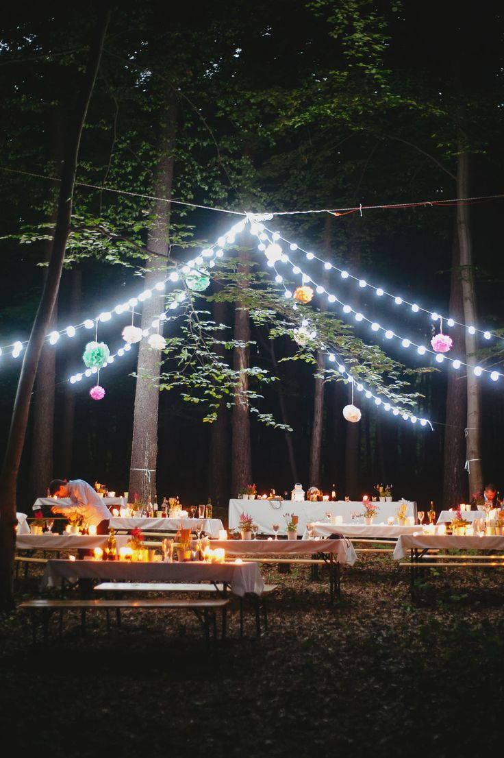 magic night, wedding day, forest