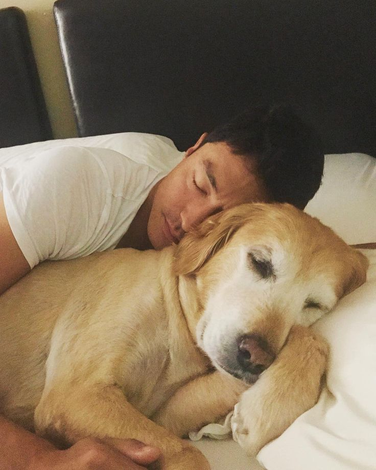 "43.9k Likes, 1,011 Comments - Daniel Henney (다니엘 헤니) (@danielhenneyofficial) on Instagram: ""My cure for jet lag❤️✈️"""