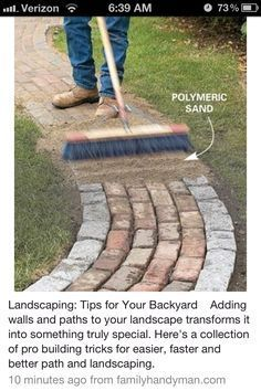 Landscaping: Tips for Your Backyard